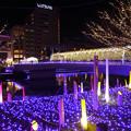 写真: 小倉・紫川のクリスマスイルミ2013(1)