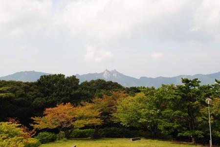 kamizakakouen_tusima03