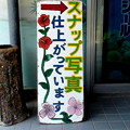 Photos: DSC04886_02