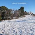 写真: 雪景色03