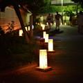 中津灯篭祭り 030