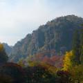 深耶馬渓の紅葉