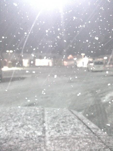 - 7 度、めちゃ雪降ってきた。