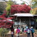 Photos: IMG_9341大山登山と紅葉