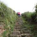 写真: IMG_0417台湾陽明山_海芋祭と七星山登山