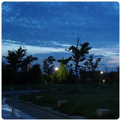 20120828 お散歩1