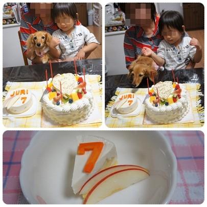 20120923 ケーキ