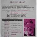 写真: 20120925 申し込み☆