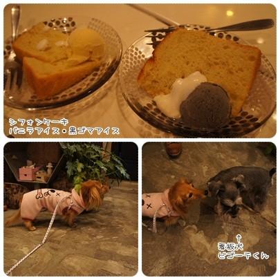 20121111 FUTURO CAFE3