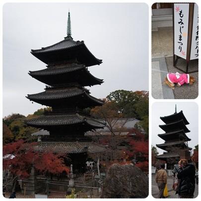 20121202 もみじまつり5