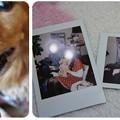 20121223 クリスマスランチ2