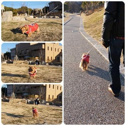 20130127 お散歩
