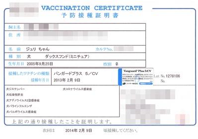 20130209 ワクチン接種 証明書