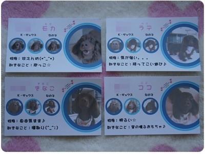 20130505 モカちゃんファミリーの名刺♪