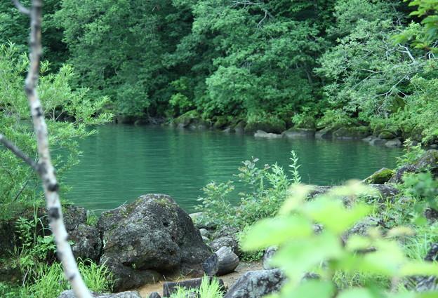 Photos: 志賀高原 琵琶池