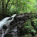 Photos: 七つ滝 1の滝