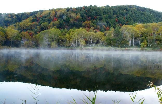 志賀高原 早朝の木戸池 紅葉と霧(靄?)