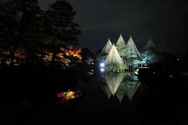 唐崎の松 雪吊り(2)  霞ヶ池