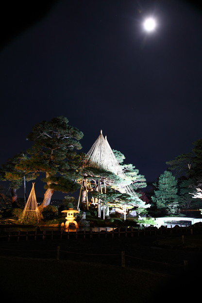 兼六園 七福神山と月明り