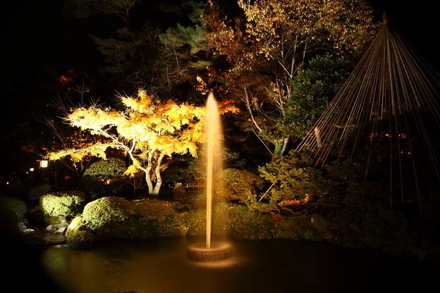 兼六園 噴水と雪吊り ライトアップ