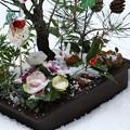 松竹梅の寄せ植えと雪・アラレ(1)