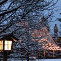 雪の兼六園熊谷桜と日本武尊の像
