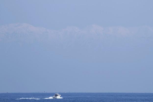 春の海と雪の壁?  白馬三山 後立山連峰