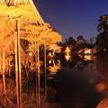 Photos: 霞ヶ池 映り込み  兼六園 春の特別開催 ライトアップ