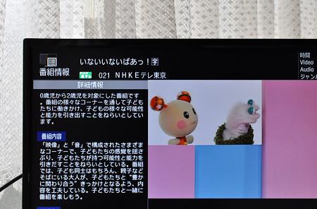 NHK E テレ画面