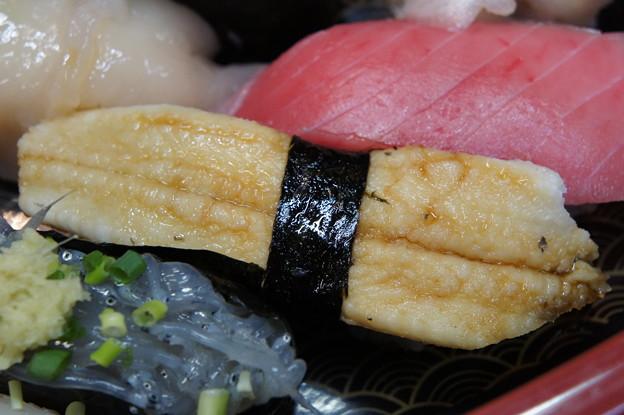 Photos: 千葉の穴子