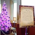 Photos: tokiya tree