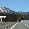 写真: 和紙恐竜