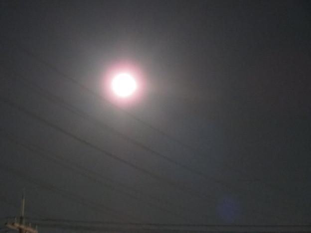 Photos: 輝く月。