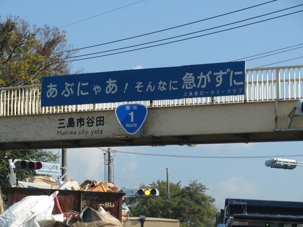 Photos: にゃあ!