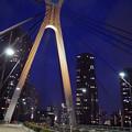 中央大橋 夜