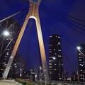 Photos: 中央大橋 夜