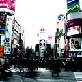 写真: あちらこちら渋谷