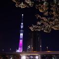 夜の水上京