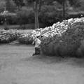 それぞれの秋`12(安曇野あちこち)-6