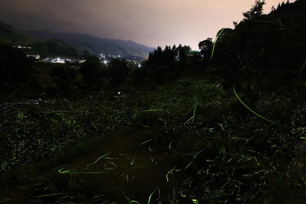 蛍舞う夜`13(辰野蛍まつり)-3