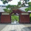 Photos: 夏の山門