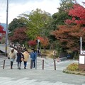 Photos: 嵐山の写真23