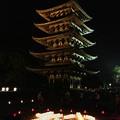 写真: 奈良 燈花会2013