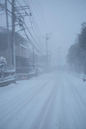 14地吹雪