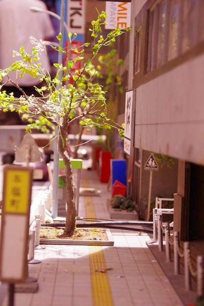 Photos: 人の気配がない破壊された町 特撮模型・・20120729