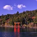 遊覧船から見た箱根神社の鳥居