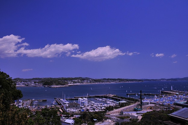 江ノ島の湘南港のヨットハーバー・・20130428