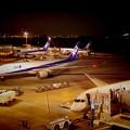 夜の羽田空港第二ターミナル?・・20131004
