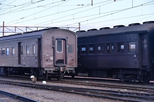 SLと連結して走る旧国鉄客車・・20131123
