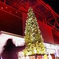 Photos: 東京タワーのクリスマスツリーイルミネーション2013・・20131222